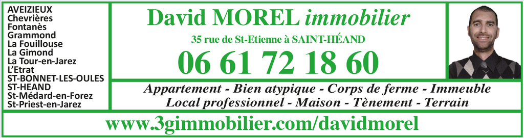David Morel Immobilier